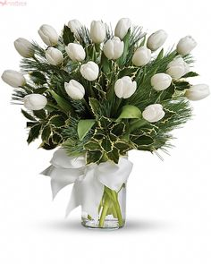 Order Tulips and Pine Tulips and Pine from Villere's Florist, your local Metairie florist. Send Tulips and Pine Tulips and Pine for fresh and fast flower delivery throughout Metairie, LA area. Christmas Flower Arrangements, Christmas Flowers, Beautiful Flower Arrangements, Floral Arrangements, Beautiful Flowers, Christmas Decorations, White Tulips, Tulips Flowers, White Flowers