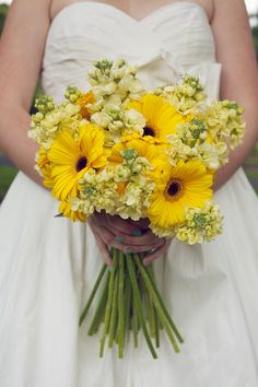 Gerberas and stock.great, inexpensive bouquet and great, inexpensive centerpiece floral but obviously in your colors! Daisy Wedding Flowers, Floral Wedding, Wedding Yellow, Gerbera Wedding, Yellow Weddings, Bouquet Wedding, Farm Wedding, Summer Wedding, Trendy Wedding