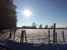 Winterzon in de Antwerpse Kempen - dec 2014