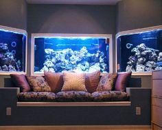 Fish aquarium tanks