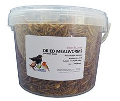 Pet Supplies Fish & Aquariums 5 Kg Honesty 5kg Chubby Dried Mealworms For Wild Birds Only