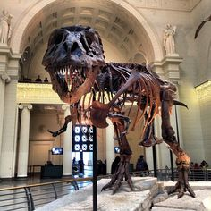 The Field Museum- cool, but way too busy and super expensive. I would pass on this for the frank loyd write tour.