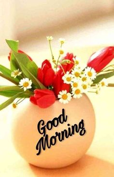 We bring such latest good morning images for you every day. Good Morning Roses, Good Morning Images Flowers, Good Morning Beautiful Images, Good Morning Picture, Morning Pictures, Beautiful Pictures, Latest Good Morning Images, Good Morning Images Download, Good Morning Wallpaper