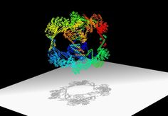 A Cage Made of Proteins, Designed With Help From the Advanced Light Source