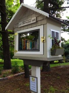 Little Free Libraries are taking the world by storm