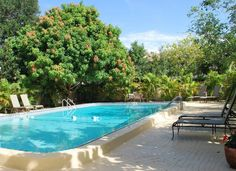Beautiful day to relax by the pool. Mango tree is full, almost ready!