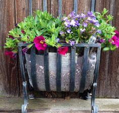 Repurposed : flowers : container, Susan's garden, succulents, hanging flowers, flower, arrangement, murphyfrog, repurpose, container gardening, wall garden, colorful bloom