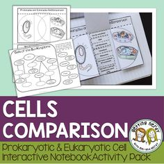 Osmosis diffusion science centers lab stations for cells plant animal and bacterial cell comparison science interactive notebook fandeluxe Images