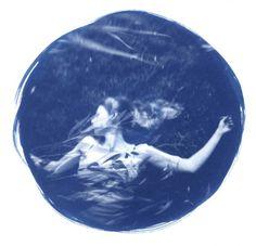 """Heather Martinez ~ """"Dryad"""" (2011) cyanotype 19 x 19 in."""