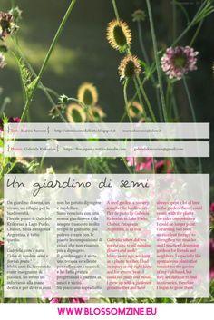 giardinosemi Parenting, Nursery, Herbs, Plants, Flower, Baby Room, Herb, Child Room, Plant
