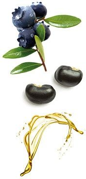 ΥΓΕΙΑ ΚΑΙ ΑΝΤΙΓΗΡΑΝΣΗ - Gianna - George Oriflame Eggplant, Vegetables, Health, Health Care, Vegetable Recipes, Veggie Food, Healthy, Eggplants, Veggies
