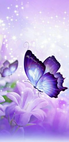 Butterfly Wallpaper, Butterfly Art, Wallpaper S, Butterflies, Pink Love, Iridescent, Fiction, Teen, Purple