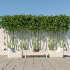 Precious Tips for Outdoor Gardens - Modern Tropical Garden Design, Home Garden Design, Modern Garden Design, Backyard Garden Design, Side Yard Landscaping, Modern Landscaping, Bamboo Landscape, Landscape Design, Privacy Plants