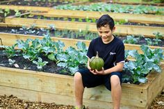 Tamihana is one of the keen gardeners who help supply the kitchen with 'Kai-fit' Healthy Kids, Kai, Fitness, Kitchen, Healthy Children, Cooking, Kitchens, Cuisine, Cucina