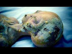 ▶ Alien Egyptian Artifacts Discovered In Jerusalem - YouTube