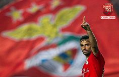 A Minha Chama: 2015-2016 1ªJ: SL Benfica 4 Estoril 0
