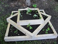 A clever way to grow strawberries. Worth trying. Terrarium, Strawberry, Grow Strawberries, Plants, Garden Ideas, Clever, Gardening, Decor, Gardens