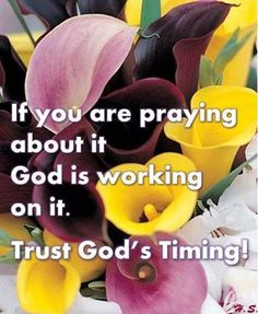 If you are praying about it God is working on it. Trust God's timing ♡ ♥ X ღɱɧღ Bible Quotes, Bible Verses, Me Quotes, Prayer Scriptures, Walk By Faith, Faith In God, Trust Gods Timing, Prayer Warrior, Power Of Prayer