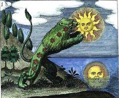 Lion vert ou Mercure préparé de l'oeuvre - Mylius - Philosophia Reformata