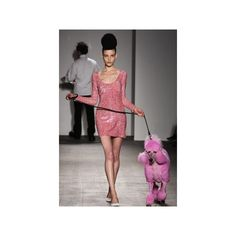 What's Hot Pink Poodles Hit NYC Fashion Week ❤ liked on Polyvore