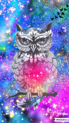 Hipster owl galaxy by rose