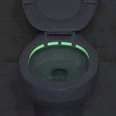 Tron Toilet!  https://fbcdn-sphotos-a.akamaihd.net/hphotos-ak-ash2/156174\_297137960376360\_199020000188157\_635162\_1110414207\_n.jpg