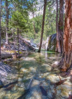 Kings River in Kings Canyon National Park. http://www.visitcalifornia.com/destination/spotlight-sequoia-kings-canyon-national-parks