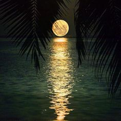 Mesmerising view of moon in Maldives