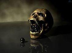 skulls wallpapers - Αναζήτηση Google