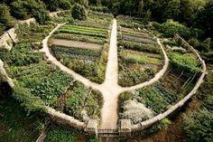 Köksträdgård enligt permakulturdesign