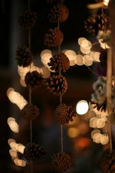 Dishfunctional Designs: Decorating & Crafting With Pine Cones. A lady I know made this really simple, yet beautiful pine cone garland using pine cones, wire and beads of some kind. Gonna do that this fall.