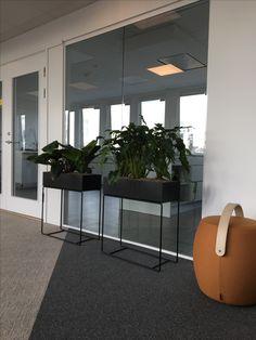 kontorsinredning av levande interiör