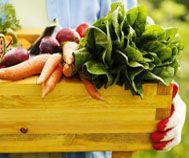 Pourquoi manger biologique est meilleur pour votre santé ?   #santé#manger#biologique