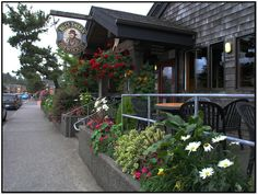 Feast on Halibut & Chips with your favorite mug of beer at Bill's Tavern & Brewery ~ Main St. Cannon Beach, Oregon
