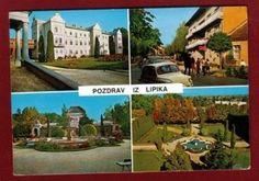 Online aukcije - Kolekcionar.eu :: Aukcije > Razglednice > Hrvatska > Slavonija > Lipik