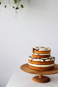 Exposed Orange and Chocolate Layer Cake | Made From Scratch