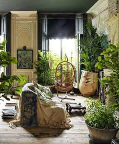 Ever wanted how to create an indoor jungle? A simple yet beautiful interior garden? Houseplants improve your quality of living. Find out how to create this home decor/interior design gem right here! Cityscape Bliss // Creative home Interior Exterior, Home Interior, Interior Garden, Botanical Interior, Apartment Interior, Interior Design Plants, Green Apartment, Bohemian Interior Design, Apartment Plants