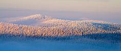 Valtavaara-Pyhävaara Nature Reserve, Kuusamo, Finland. Photo: Markku Pirttimaa