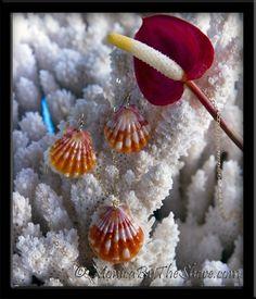 Sunrise Shells Necklace & Earrings 3 Piece Set in Gold