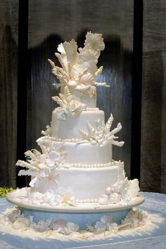 Seashell and coral wedding cake