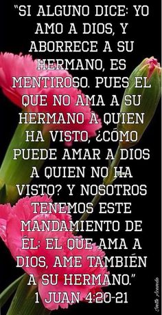 Reflection Quotes, Rainbow Falls, Healing Words, My Lord, Spanish Quotes, Jehovah, God Is Good, Bible Quotes, Psalms