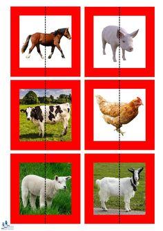 Preschool Learning Activities, Teaching Kids, Life Skills Classroom, Wild Animals Pictures, Reading Club, School Posters, Kids Education, Farm Animals, Kindergarten