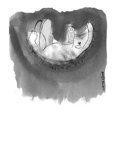 Falling kitten Drawing  black and white A5 illustration by liatib