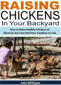 FREE TODAY  Raising Chickens In Your Backyard: How to Raise Healthy Chickens at Home So You Can Feed Your Family in a Crisis by John Williams http://www.amazon.com/dp/B011TD5DC6/ref=cm_sw_r_pi_dp_cZ6iwb02RHJ2Y