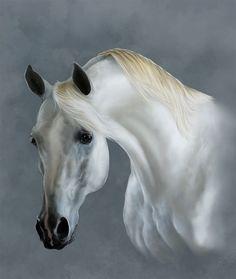 .horse ART