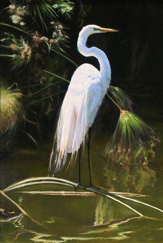 Great White Heron Egret Florida Everglades Swamp 24X36 Oil ...