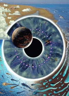 PINK FLOYD Pulse, 2 CD Live album of their greatest hits including a full live on stage recording of the entire Dark Side of the Moon album. David Gilmour, Discos Pink Floyd, Art Pink Floyd, Imagenes Pink Floyd, Concert Rock, Pink Floyd Albums, Rock Poster, Cool Album Covers, Animal Tattoos
