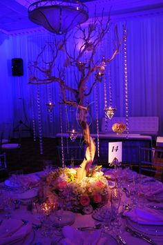 Gorgeous Manzanita Tree with hanging orchids, crystals and candles