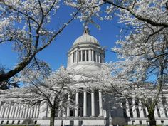 Visiting the capitol building in Olympia -- Fun day trip from Seattle