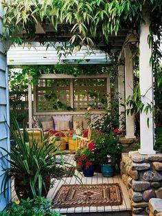 Sichtschutz kletterpflanzen überdachung veranda